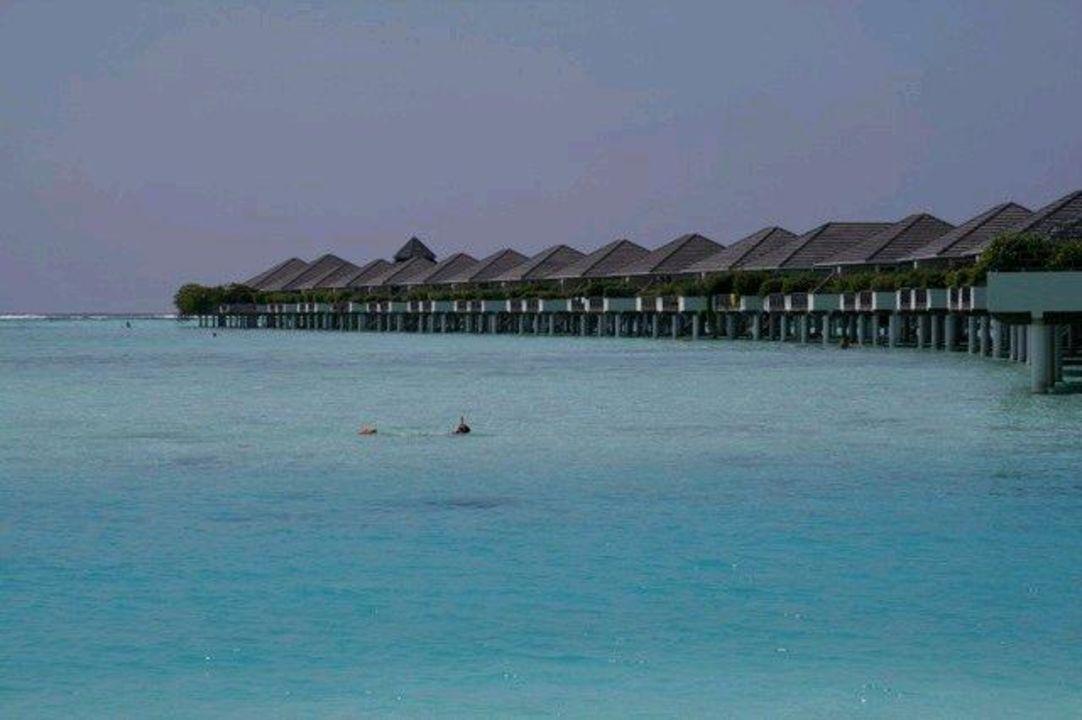 Blick auf die Wasserbungalows Sun Island  Resort & Spa
