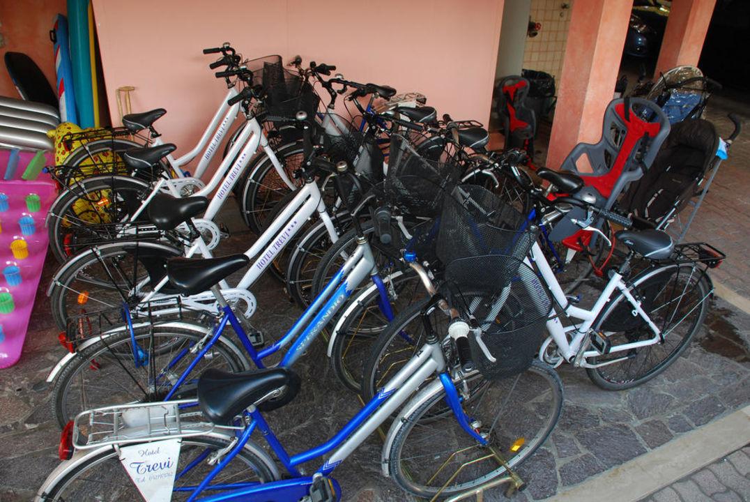 Leihräder Hotel Trevi