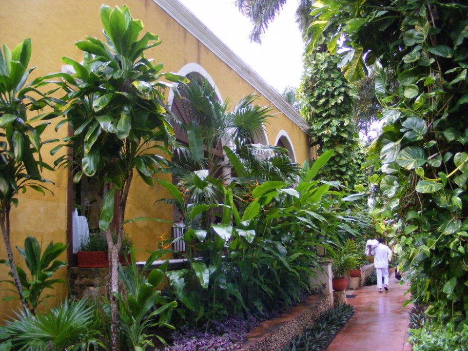 Bereich Eingang Hacienda Chichen Resort and Yaxkin Spa