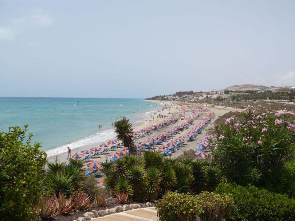 Strand vor dem Hotel SBH Hotel Taro Beach
