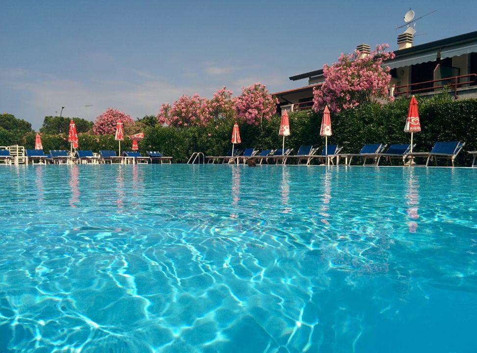 Pool Hotel Porto Azzurro