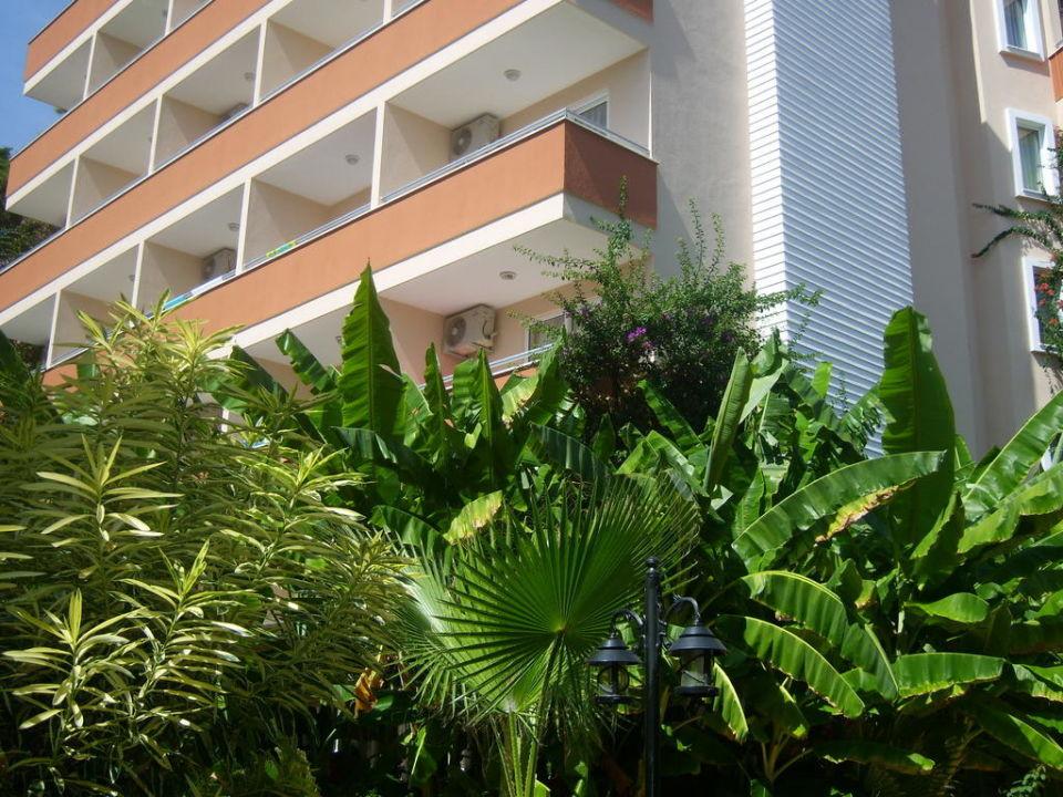 Das Haupthaus Hotel Club Dizalya