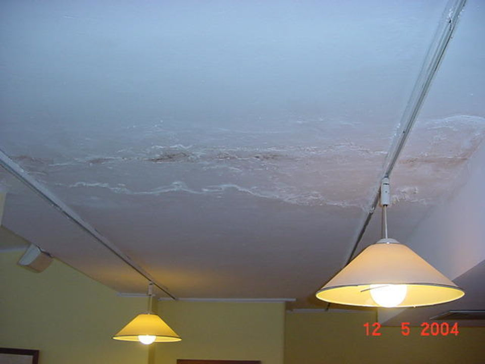 """"""" blühende""""  Decke im Restaurant Bild 2 Aparthotel Bitacora Lanzarote Club"""