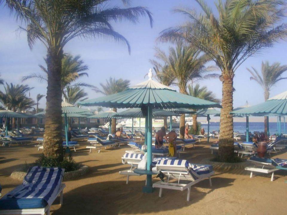 Strand Le Pacha Hotel Le Pacha Beach Resort