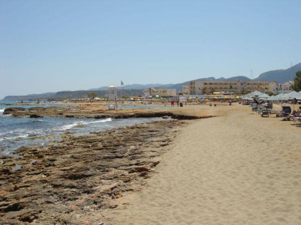 Strand 1 Hotel Cretan Malia Park Malia Holidaycheck Kreta