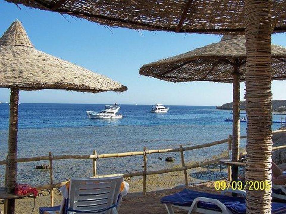 Liegen am Strand Island View Resort