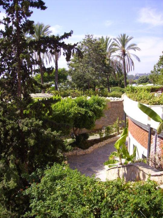 Дорога в винный клуб TT Hotels Pegasos Resort