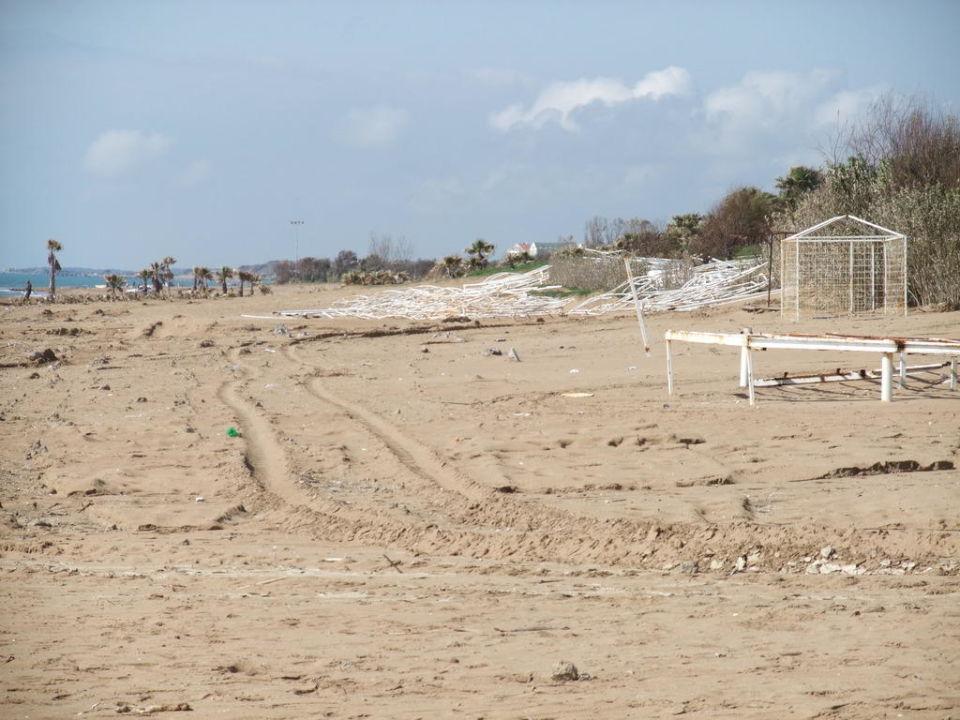 Strand soweit das Auge reicht Alba Royal Hotel