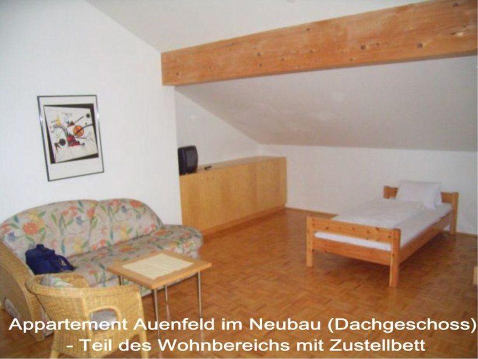 Appartement im Haus Auenfeld (Neubau) Hotel Widderstein