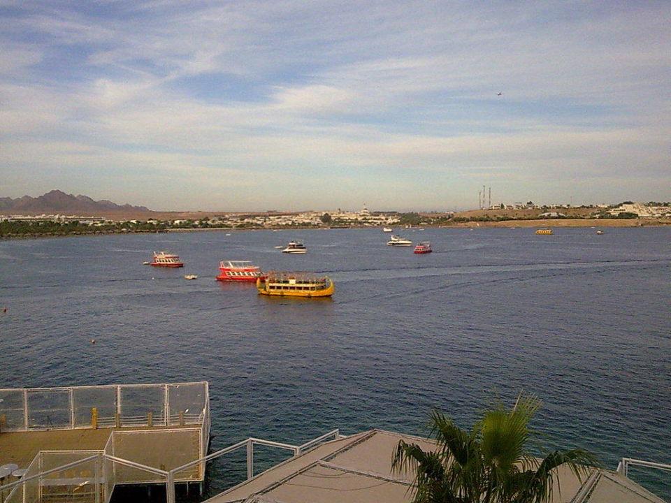 Pool view Lido Sharm Hotel