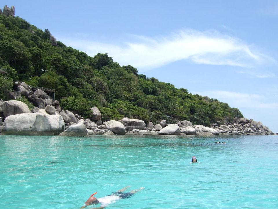 Beim Snorcheln Hotel Nangyuan Island Dive Resort