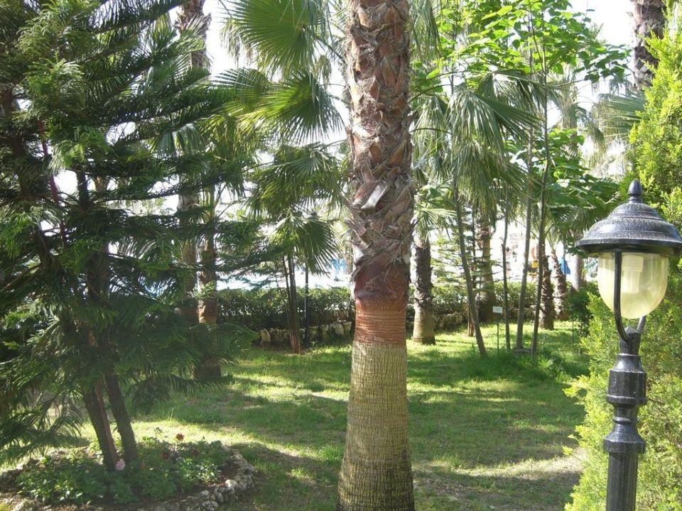 Gartenanlage Botanik Hotel & Resort