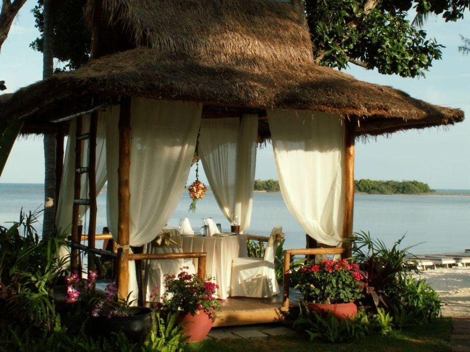 romantisches dinner amari koh samui chaweng beach holidaycheck koh samui thailand. Black Bedroom Furniture Sets. Home Design Ideas