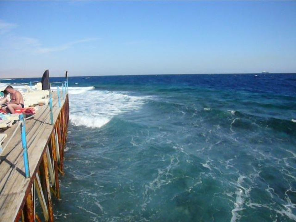Einstieg Richtung Riff Royal Albatros Moderna