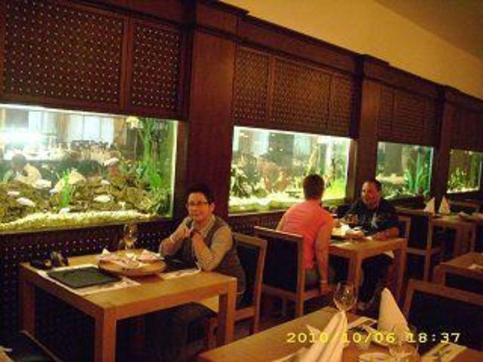 Das A-la-carte-Restaurant (Chinesisch) Hotel Grifid Bolero