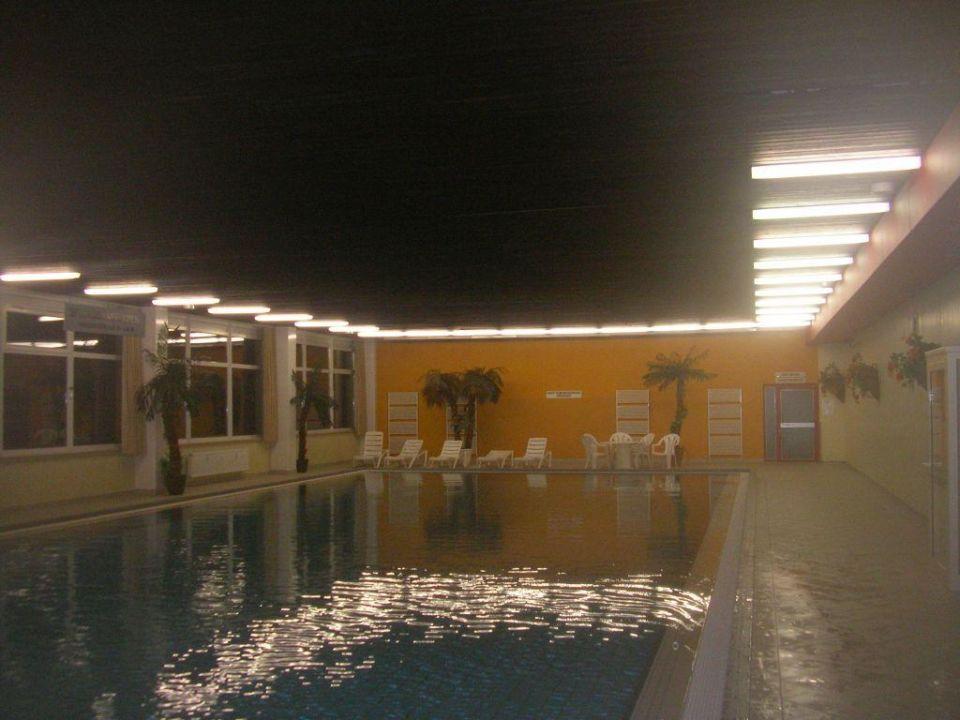Schwimmhalle im Hotel Panoramic Panoramic Oberharz Hohegeiß
