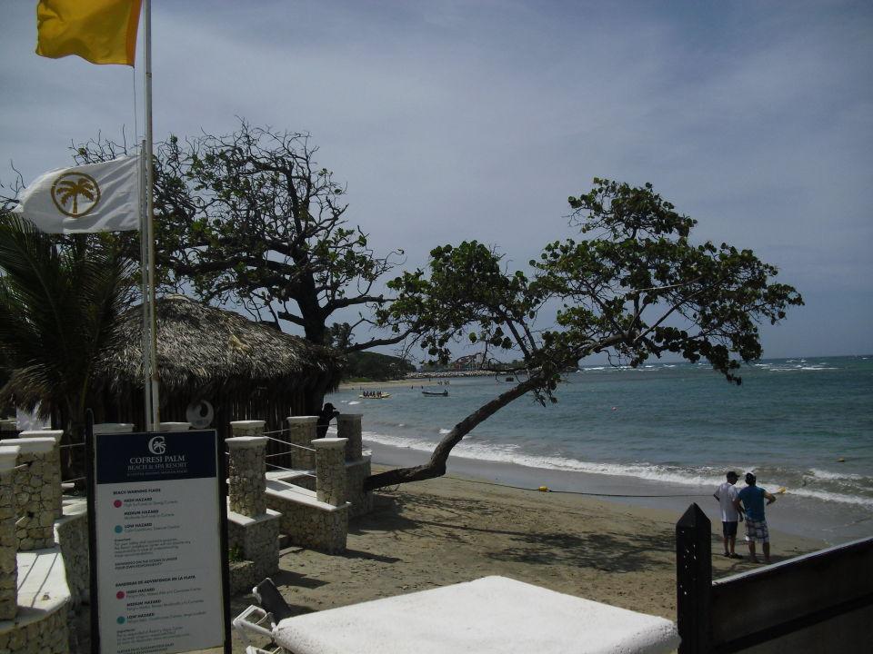 Strand außen und hoteleigener Strandbereich Cofresi Palm Beach & Spa Resort