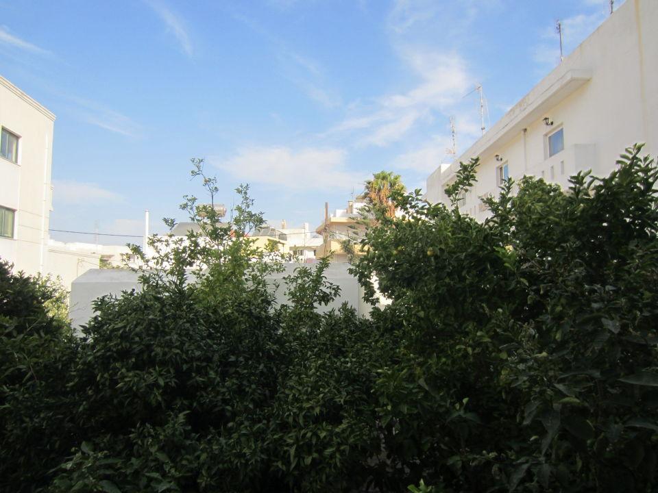 Gartenseite Hotel Imperial