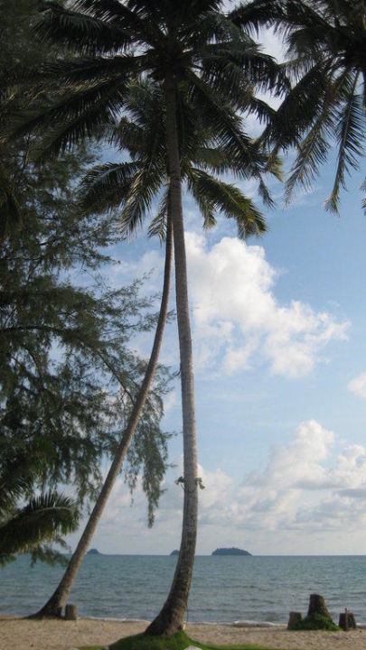 Blick aufs Meer Hotel Koh Chang Paradise Resort