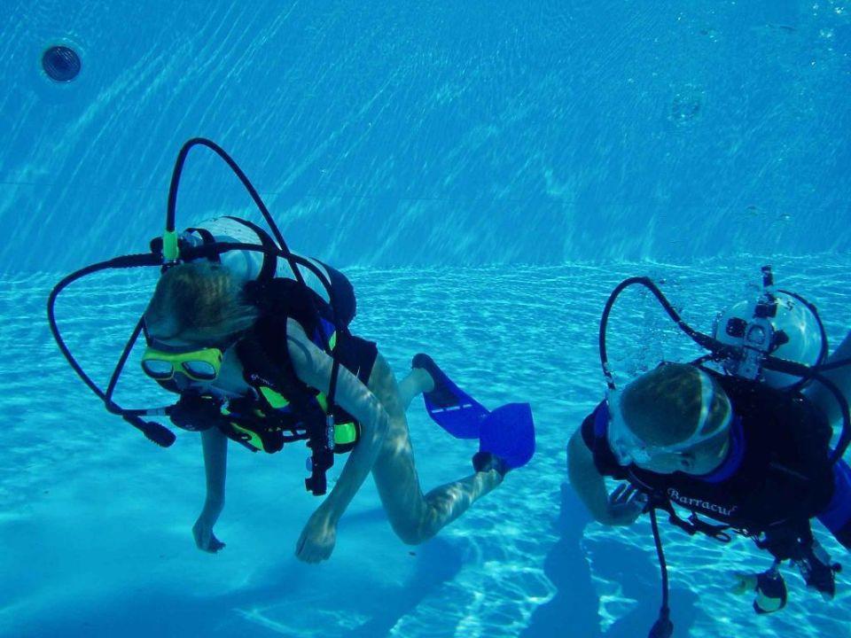 Subex Intro-Dive Mövenpick Resort El Quseir