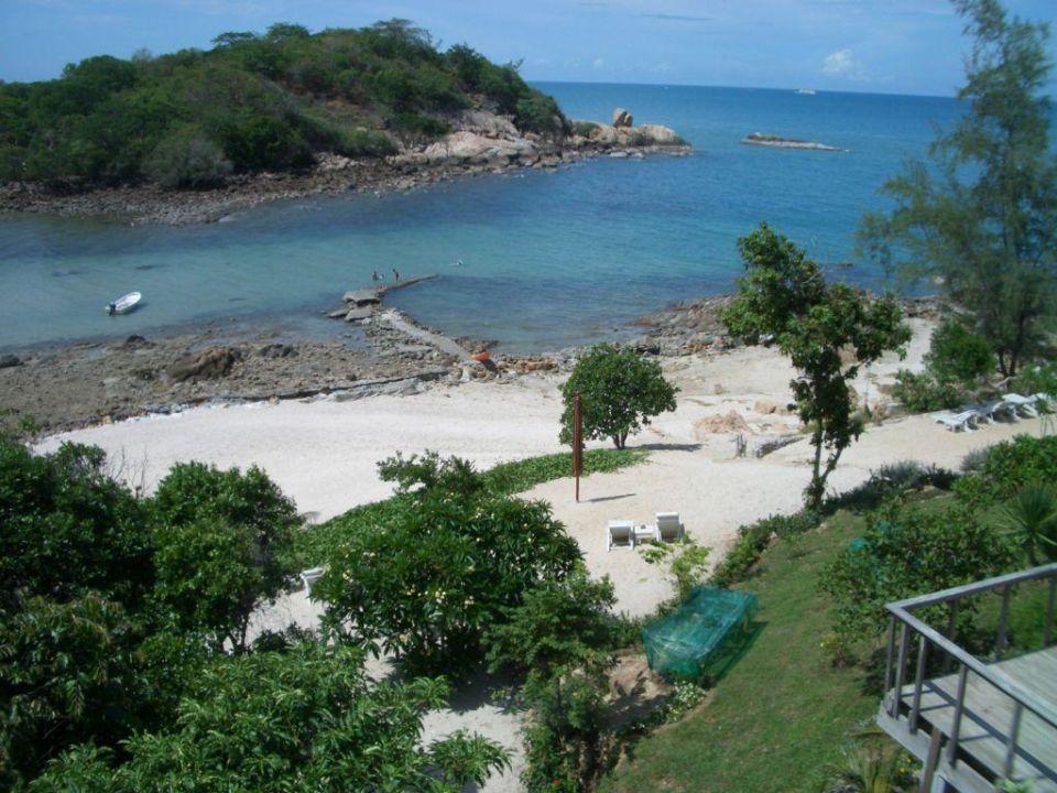 Blick vom Pool Q Signature Samui Beach Resort