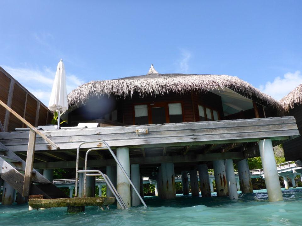 bungalow vom wasser kuramathi maldives rasdhoo. Black Bedroom Furniture Sets. Home Design Ideas