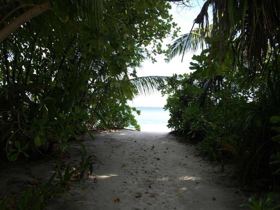 Durchgang zum Strand Hotel Madoogali