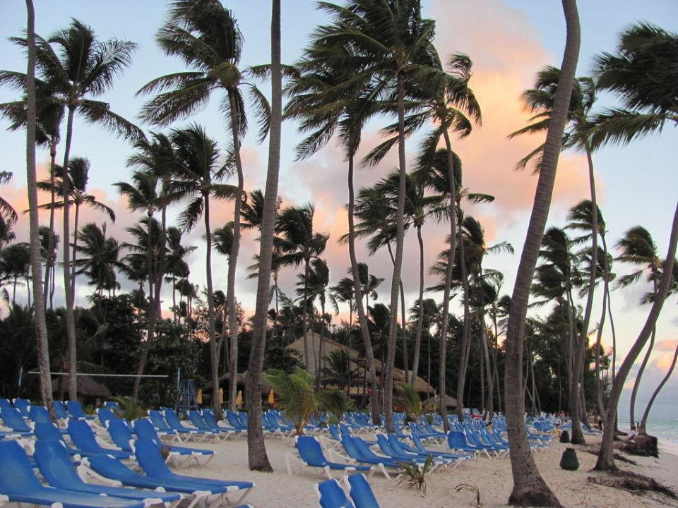 Plaża przy hotelu Barceló Dominican Beach (Vorgänger-Hotel – existiert nicht mehr)