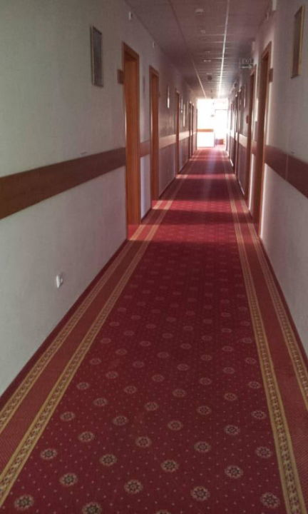 Flur vor den Zimmern im 2. OG Hotel Slavia