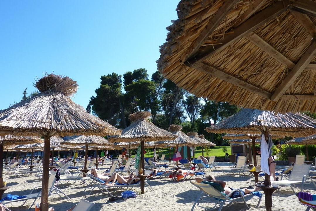 Soft and sandy beach Kontokali Bay Resort & Spa