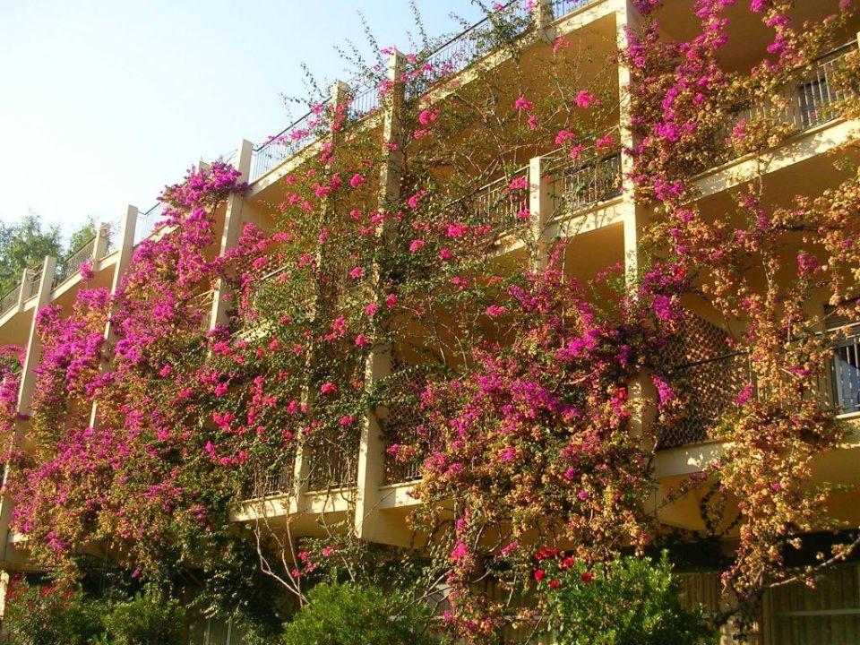 Blick auf Vasto Marina Hotel Lido