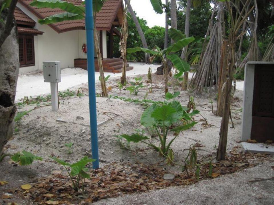 Toll angelegt Robinson Club Maldives - Adults Only