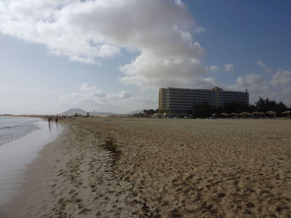 Hotel und bungalows hotel riu oliva beach village for Riu oliva beach village