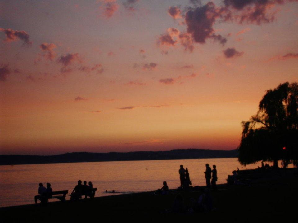 Blick auf den See Seehotel Off