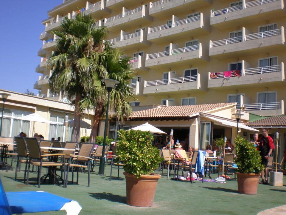 Innenansicht  Hotel Grupotel Amapola