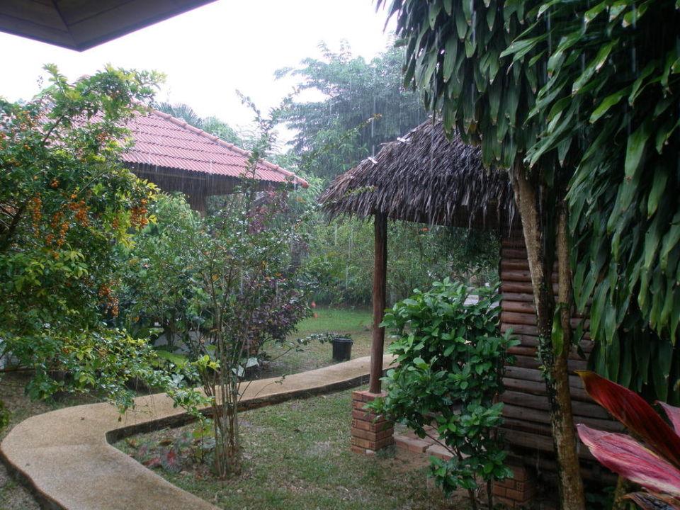 Ausblick von der Terrasse(bei Regen) Krathom Resort