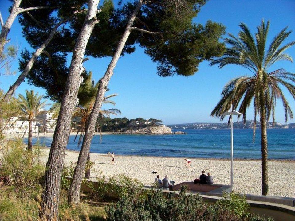 Mallorca Paguera Palmira Beach Hotel