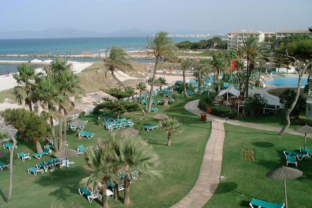 gartenanlage am strand mit pool aparthotel esperanza park platja de muro playa de muro. Black Bedroom Furniture Sets. Home Design Ideas