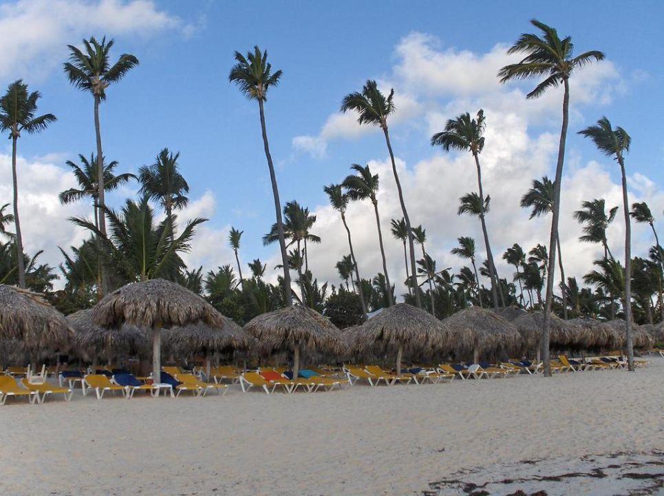 Strandabschnitt Bavaro Iberostar Selection Bavaro