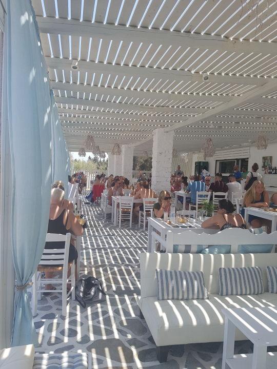 Restaurant Hotel Surfing Beach Huts