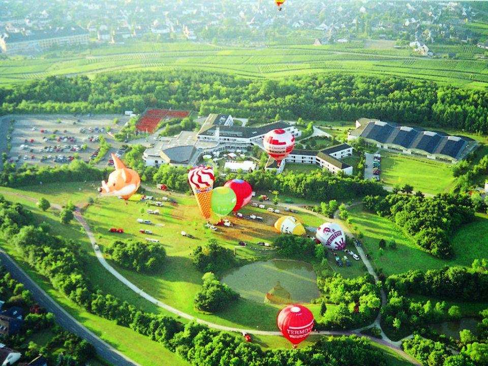Moselpark Bernkastel