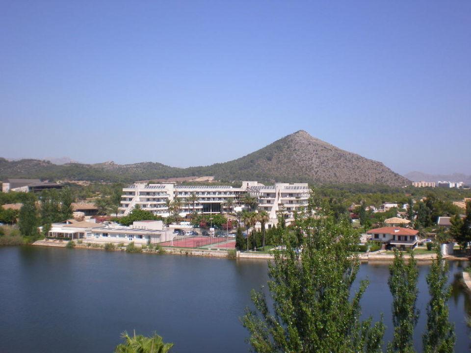 Blick zum See Hotel Grupotel Amapola