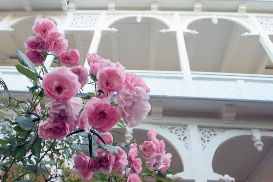 Bäderstil Villa Meeresgruss Hotel Garni Villa Meeresgruss