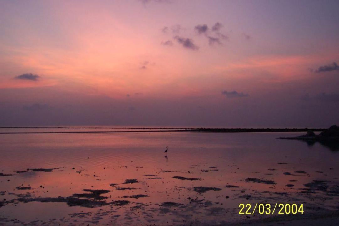 Sonnenaufgang auf Lohifushi Hotel Adaaran Select Hudhuran Fushi
