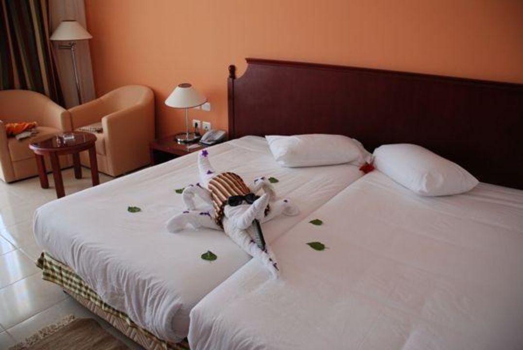 Krokodyl Fantazia Resort Marsa Alam