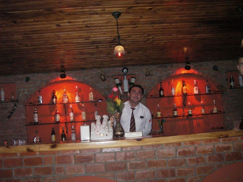 An der Bar Armas Gul Beach Hotel