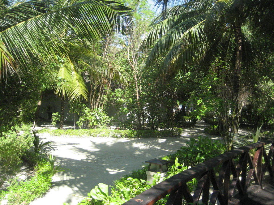 Außenanlage Cinnamon Dhonveli Maldives