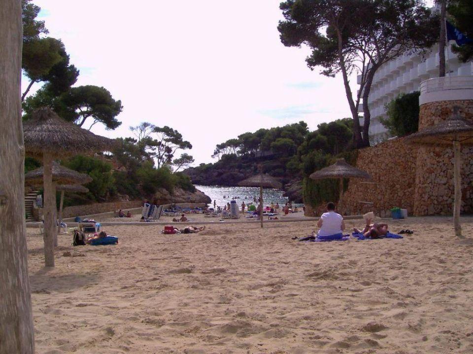 Blick über den Strand auf die Bucht von Cala Egos AluaSoul Mallorca Resort