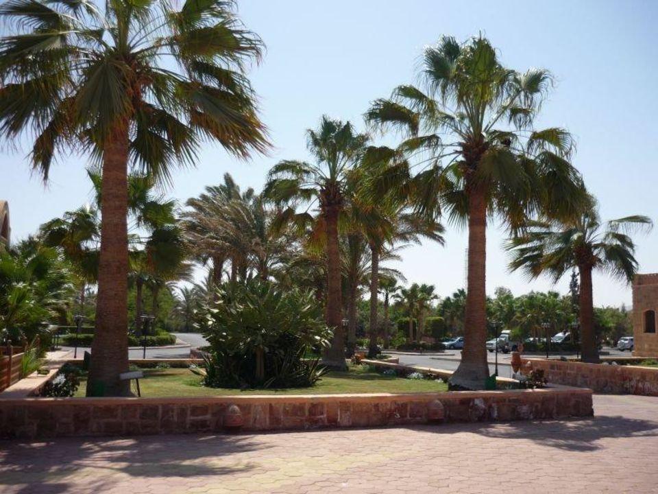 Hotelauffahrt Mövenpick Resort El Quseir