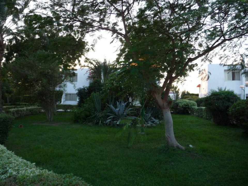 Garten Hotel Menaville Safaga